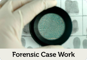 forensic case work