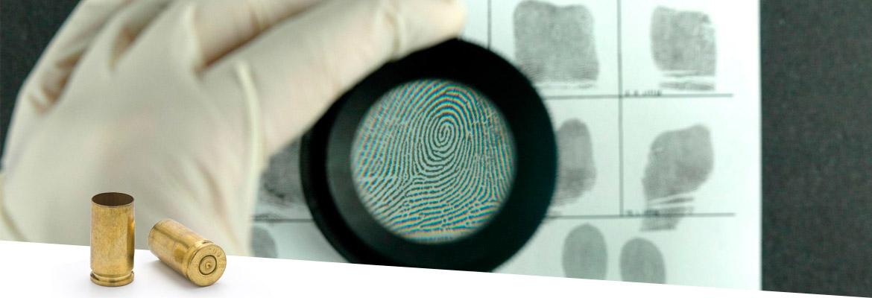 forensic case work